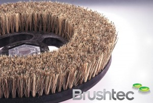 Union Fibre polishing brush
