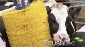 delaval cow brush