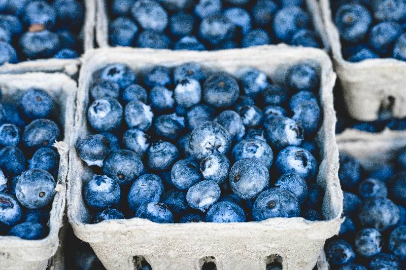 Blueberries in storage